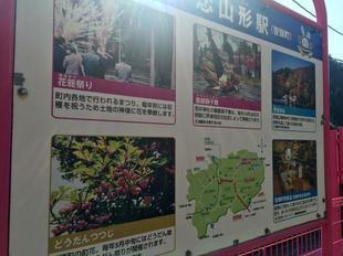 koiyamagata01.jpg