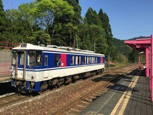 koiyamagata02.jpg
