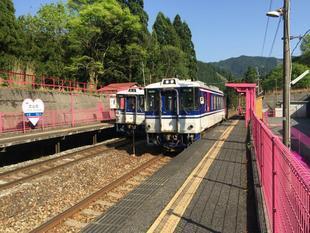 koiyamagata03.jpg