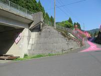 koiyamagata1.jpg