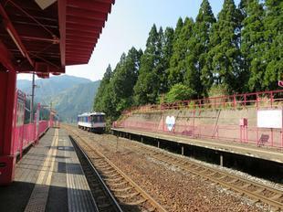 koiyamagata13.jpg