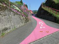 koiyamagata2.jpg