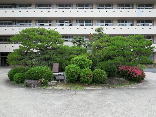 mimasaka7.JPG