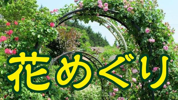 津山市近郊 春の花めぐり2017