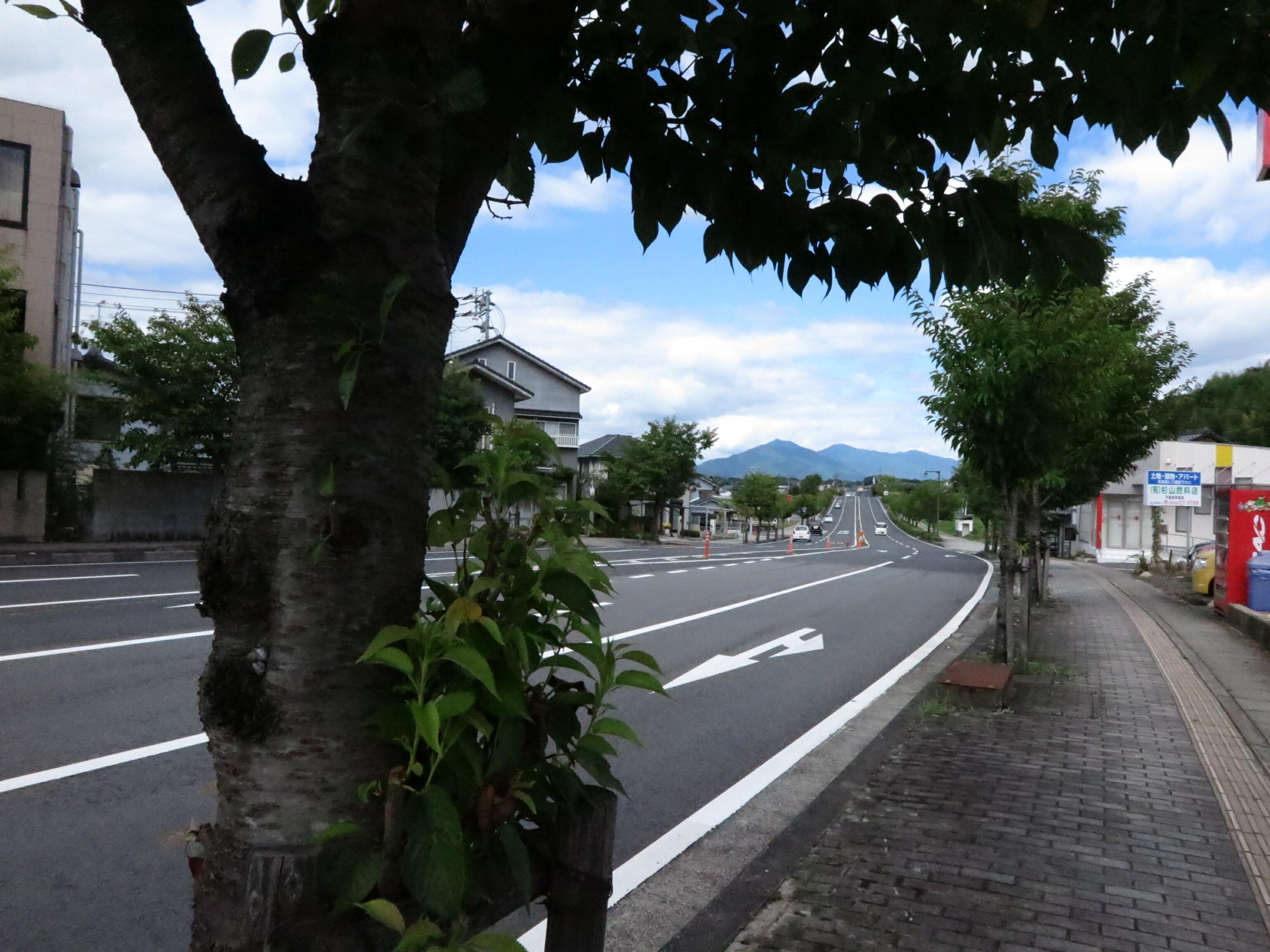 宇田川興斎旧宅跡(北町) - 津...