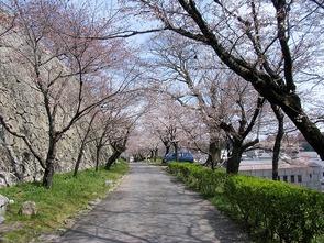 南側(鶴山公園)
