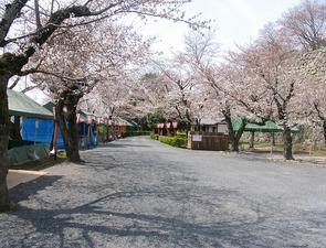鶴山公園内