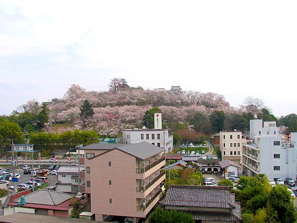 nishi.800.jpg