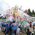 阿波【八幡神社の花祭り】