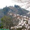 篠山城跡【さら山地区】