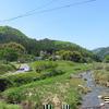 倉見川の広瀬橋附近のホタル生息地