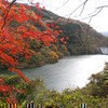 津川ダム周辺の紅葉がメチャ綺麗。
