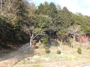 hiroyama1.jpg