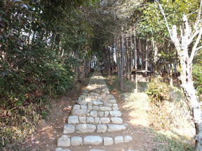 hiroyama2.jpg