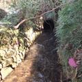 堀坂の「釜の口用水」トンネル