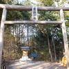 広野小裏山 小祠に祀られている広野神社
