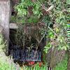 河面 国分寺台地を潤した牛の子用水