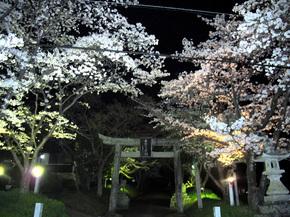 shirakami2.jpg