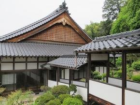 akira_4.jpg