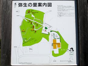 yayoi2.jpg