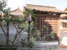 本山寺16.jpg