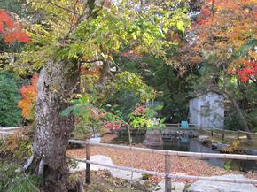 本山寺25.jpg