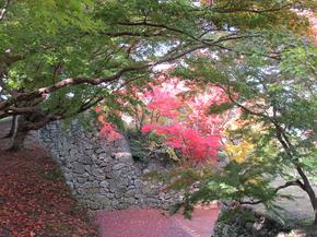 鶴山13.jpg