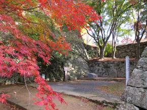 鶴山14.jpg