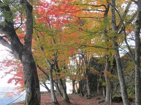 鶴山18.jpg