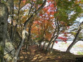 鶴山21.jpg