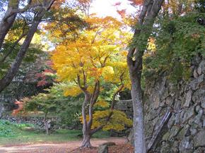 鶴山3.jpg