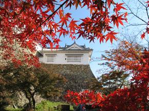 鶴山8.jpg