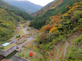 tsugawa8.jpg