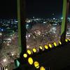 鶴山公園の夜景が素晴らしい!2013年4月3日(水)