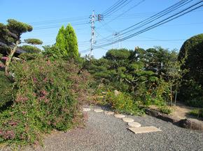 yasuda40.jpg