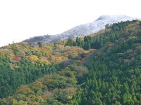 tsugawa06.jpg