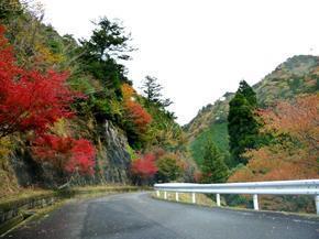 tsugawa26.jpg
