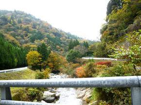 tsugawa6.jpg