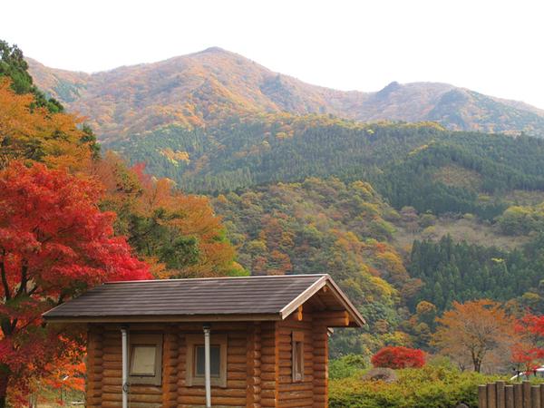 tsugawa16-thumb-800x600-27596.jpg