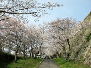鶴山.jpg