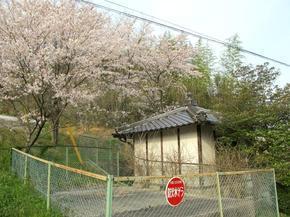 daishi6.jpg