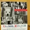 児玉小枝写真展『ラスト・チャンス!~ぼくに家族ができた日~』