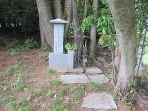 sainokami2.jpg