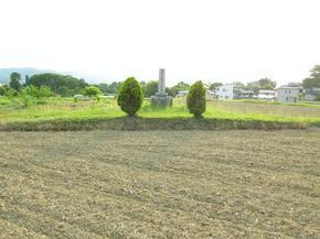 wasuke7.jpg