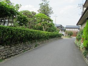 gyoku6.jpg