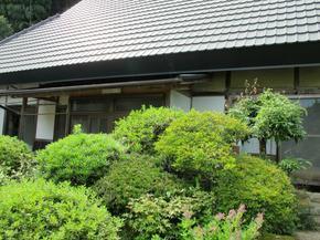 shinkouji14.jpg