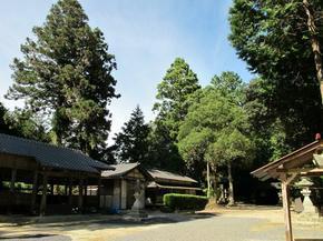 takatsu6.jpg