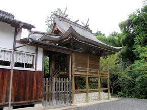 tsuru4.jpg