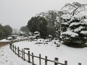 2015_syuraku12.jpg