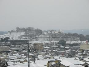 shirakami6.jpg